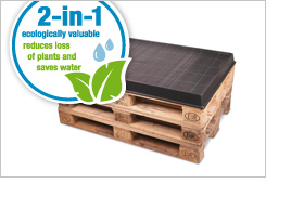 Plastic tray for euro pallets with integrated 2-in-1 irrigation