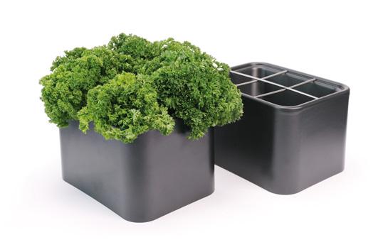 Kräutervasen aus Kunststoff