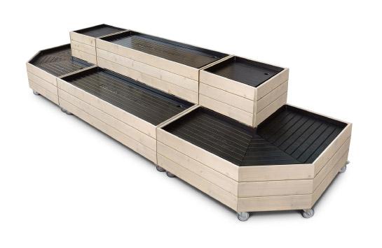 timber 11